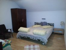 Accommodation Budacu de Sus, Judith Guesthouse