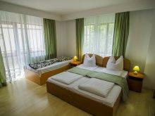 Apartman Scheiu de Sus, Codrului Panzió