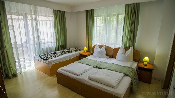 Codrului Guesthouse Sinaia