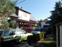 Guesthouse Tiszatarján, Szőke Tisza Apartment