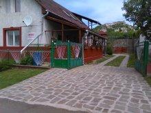 Accommodation Berkenye, Csibész Guesthouse