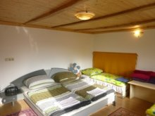Guesthouse Nagyrada, Active Guesthouse