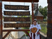 Cazare Dârja, Pensiunea în deal La Ancuța