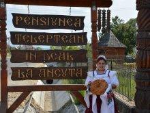Cazare Salva, Pensiunea în deal La Ancuța