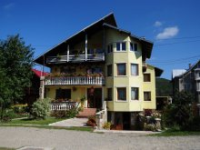 Bed & breakfast Solca, Orhideea Guesthouse