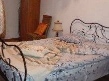 Accommodation Zlătunoaia, Căsuța Verde Vacation home
