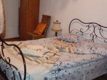 Casă de vacanță Bârgăuani, Casa de vacanță Căsuța Verde