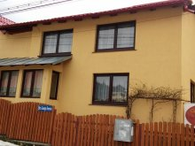 Casă de oaspeți Lăzărești (Schitu Golești), Casa Doina