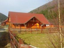 Casă de oaspeți Barajul Zetea, Casa Turista