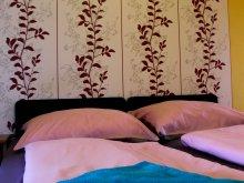 Accommodation Terény, Fáradt Vándor Guesthouse