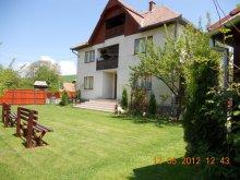 Accommodation Pleșcoi, Bordó Guesthouse
