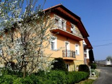 Accommodation Liszó, Margareta Apartment