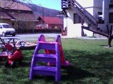 Cazare județul Harghita, Tichet de vacanță, Pensiunea Fantázia
