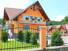 Accommodation Bistrița, Tichet de vacanță, Flamingo Guesthouse