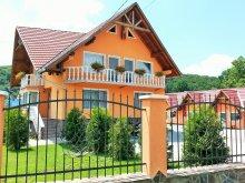 Accommodation Targu Mures (Târgu Mureș), Flamingo Guesthouse