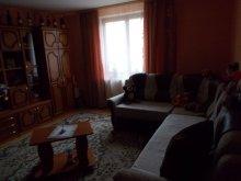 Accommodation Bârzava, Katalin Chalet