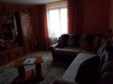Accommodation Siculeni, Katalin Chalet
