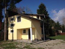 Accommodation Galbeni (Nicolae Bălcescu), Bako Vila