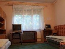 Accommodation Jakabszállás, Pannónia Apartment