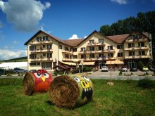 Accommodation Cârțișoara, Travelminit Voucher, Dumbrava Hotel