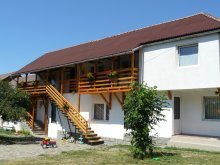 Accommodation Ocna de Sus, Anciupi Guesthouse