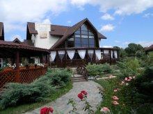 Accommodation Dragoslavele, Casa Cristina Guesthouse