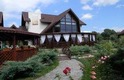 Spa offers Bușteni, Casa Cristina Guesthouse