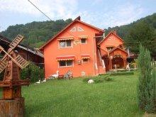 Apartman Argeș megye, Doru Panzió