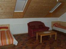 Accommodation Ruzsa, Pataki House Apartment