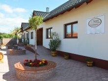 Accommodation Agyagosszergény, Hanság Guesthouse