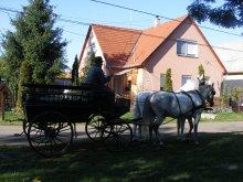 Kedvezményes csomag Tiszaroff, Akácvirág Vendégház