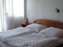 Accommodation Nagyvázsony, Anita House