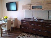 Apartament Sirok, Apartamente Paradise