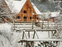 Accommodation Scrind-Frăsinet, Larix Guesthouse