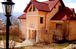 Panzió Bistrița, Ambiance Panzió