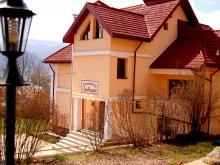 Pensiune Viișoara (Todirești), Pensiunea Ambiance