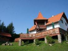 Cazare Plăieșii de Jos cu Tichet de vacanță, Cabana Nyergestető