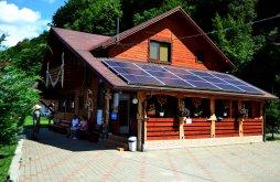 Cazare Săcuieu cu Vouchere de vacanță, Pensiunea Sequoia