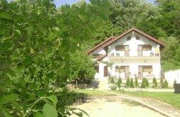 Apartman Krassó-Szörény (Caraș-Severin) megye, Casa Natura Panzió