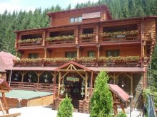 Accommodation Dragoslavele, Casa Wiarusti Guesthouse