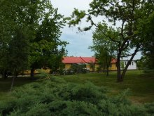 Hostel Tiszavárkony, Tabără de tineret, Zonă de camping