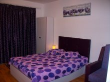 Accommodation Sibiu county, Lilia Apartment