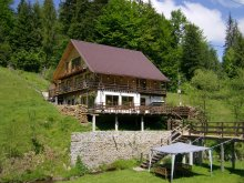 Cabană Transilvania, Cabana Cota 1000