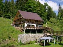 Chalet Săldăbagiu de Munte, Cota 1000 Chalet