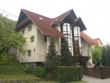 Accommodation Gaiesti, Casa Dan B&B