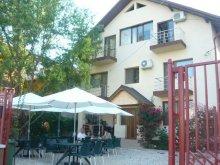 Bed & breakfast Satu Nou (Mircea Vodă), Casa Firu Guesthouse