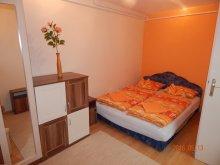 Accommodation Balatonszemes, Anna Apartment