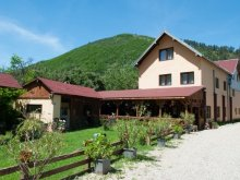 Accommodation Cut, Domnescu Guesthouse