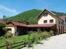 Accommodation Gura Râului, Domnescu Guesthouse