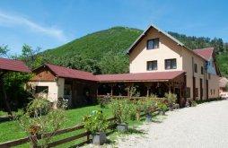 Accommodation Săliște, Domnescu Guesthouse